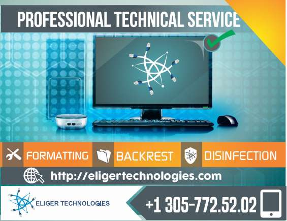 Professional technical service