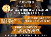 Barbero profesional en el bronx