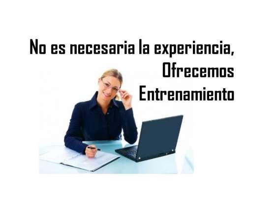 No es necesaria la experiencia, comunicate al 9176884309, envia tu currículo a personalnewyork.bronx@gmail.com