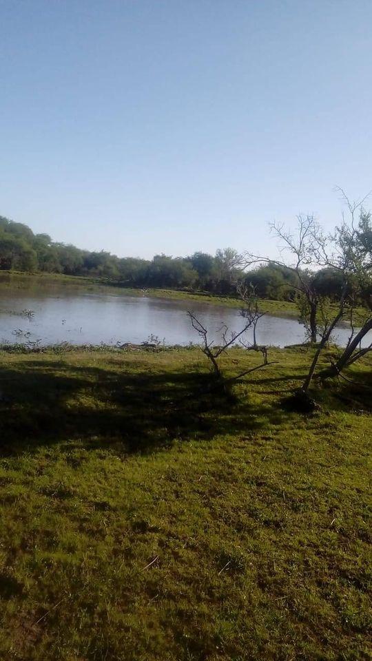 Vendo campo 24hs alcaraz entre rios argentina